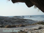 beachgreece51s.jpg