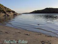 beachirl10s.jpg