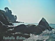 beachtoss009s.jpg