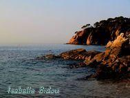 beachtoss021s.jpg