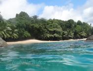 seychelles13s.jpg