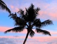 seychelles19s.jpg