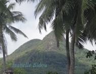 seychelles2s.jpg