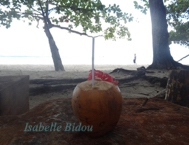 seychelles4s.jpg