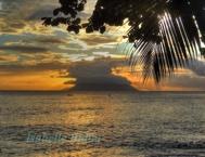 seychelles8s.jpg